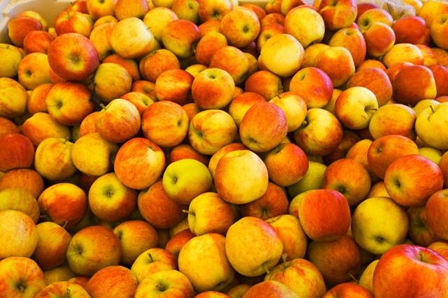 A crate of honeycrisp apples fresh